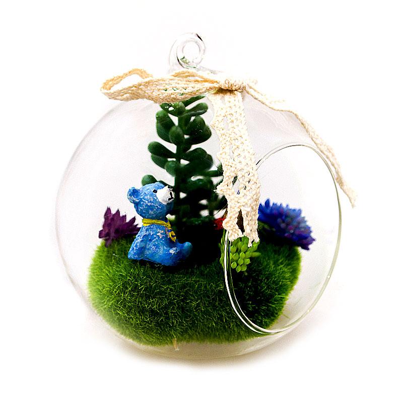 Mini Garden in ball glass  จัดสวนสวยเล็กๆ ไว้ในบ้านคุณ สวยเก๋ ไม่เหมือนใคร  แบบทรงกลม